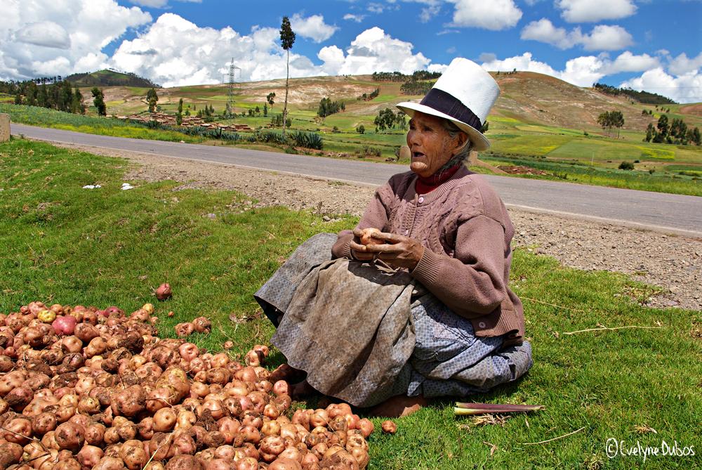 A3-Thérapy(72) : La vendeuse de patates.
