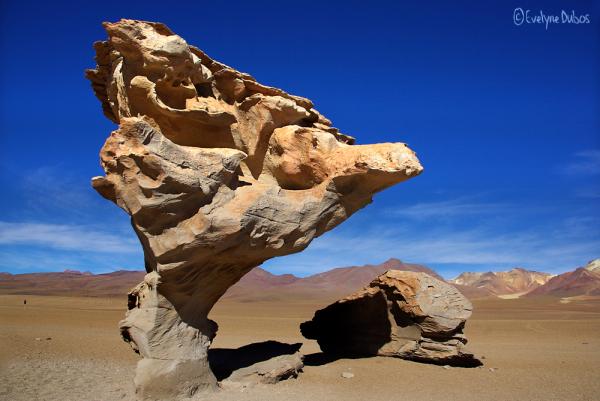 Desert'art.