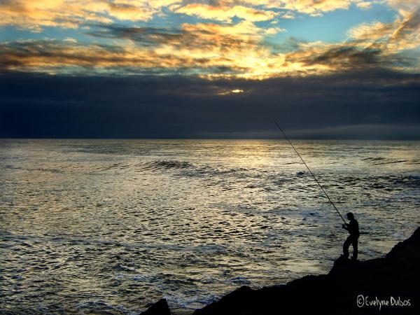 Le pêcheur d'or.