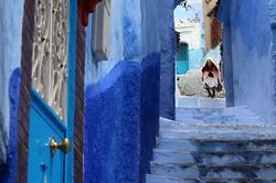 Bleu Chefchaouen