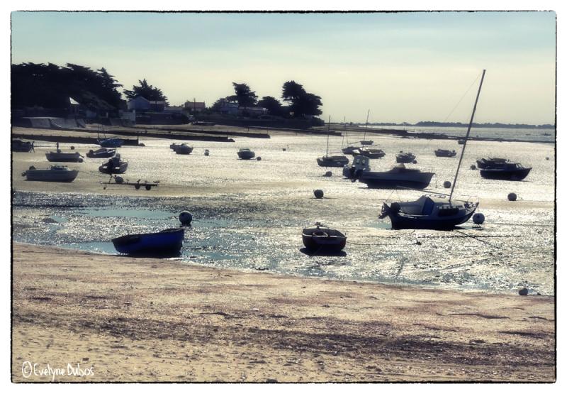 Un dimanche à la mer (4)