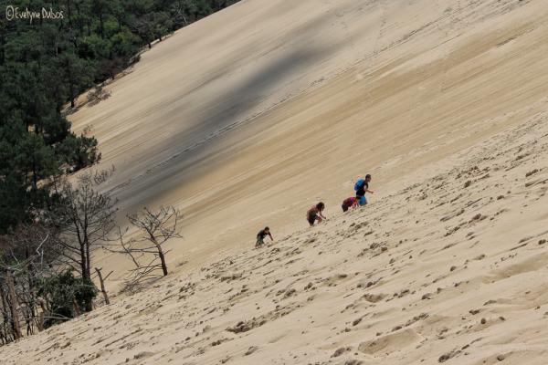 Des airs de désert... (2)