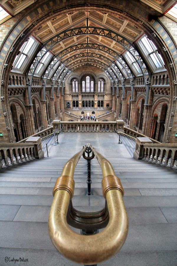 Escaliers Londoniens (3)