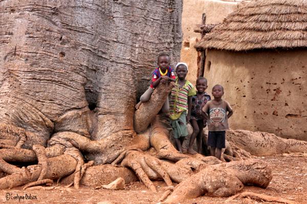 Couleur afrique.