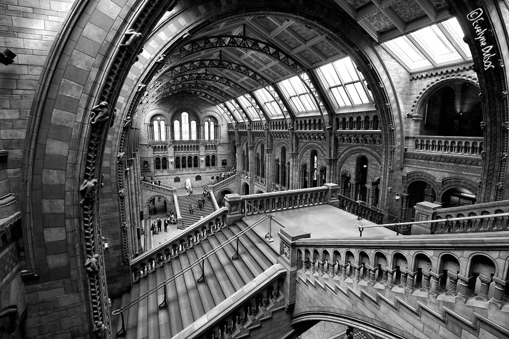 Escaliers Londoniens (5)