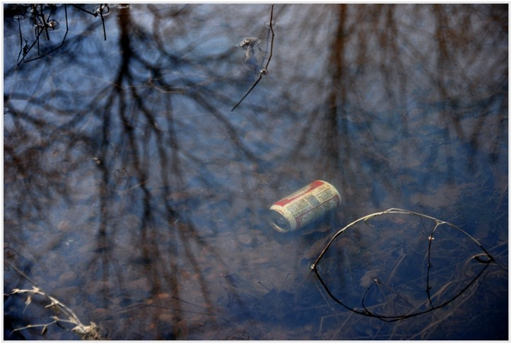 rash litter waste Beer! Use a trashcan asshole...