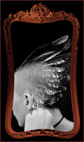 13 Dark Angels