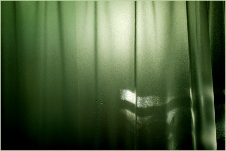 Sun on Shower Curtain