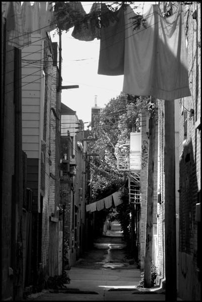 an alleyway in the plateau neighborhood of montrea