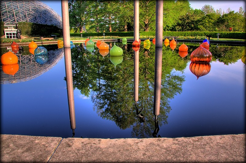 Chihuly onions at the Missouri Botanical Garden
