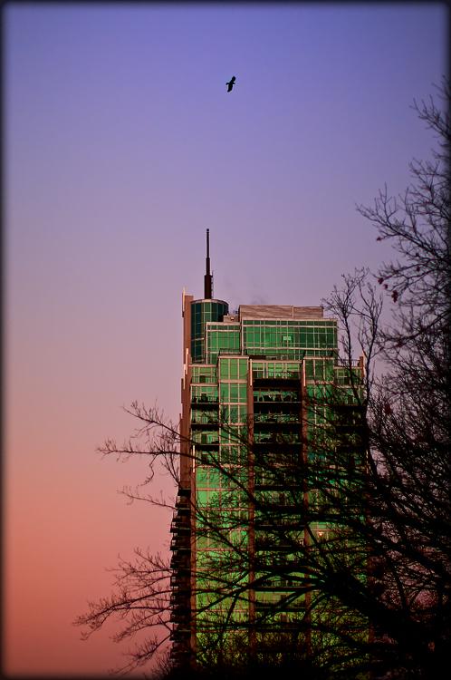 Urban dawn
