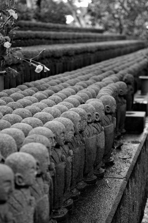 Minature buddhas in multiple