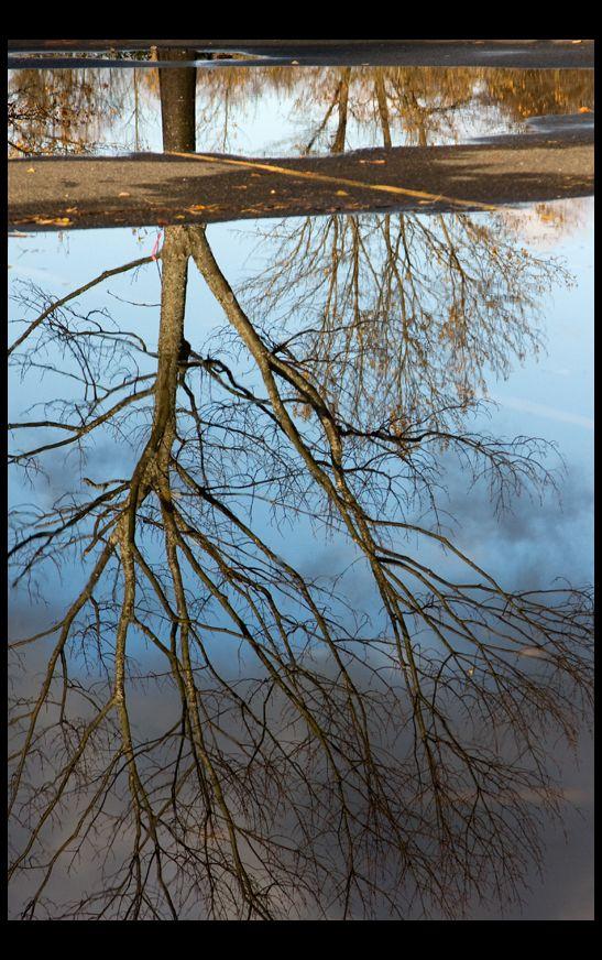 Split Reflection