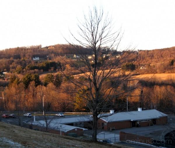 Winter light across the hillside