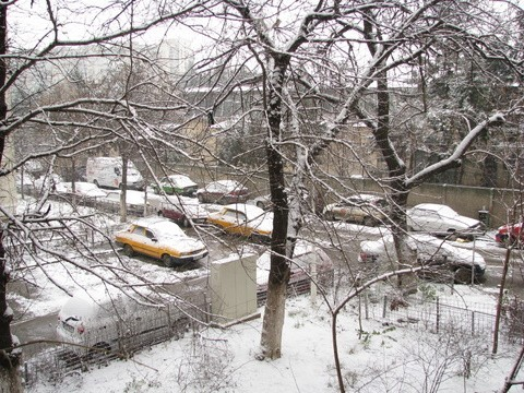 White Parking Lot...