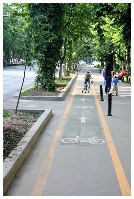 New Bicycle Tracks