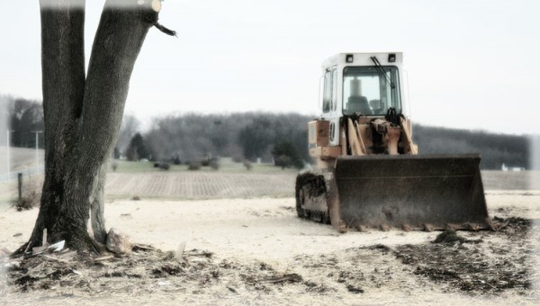 bulldozer next to a tree