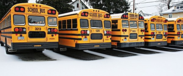 buses lined up in the snow
