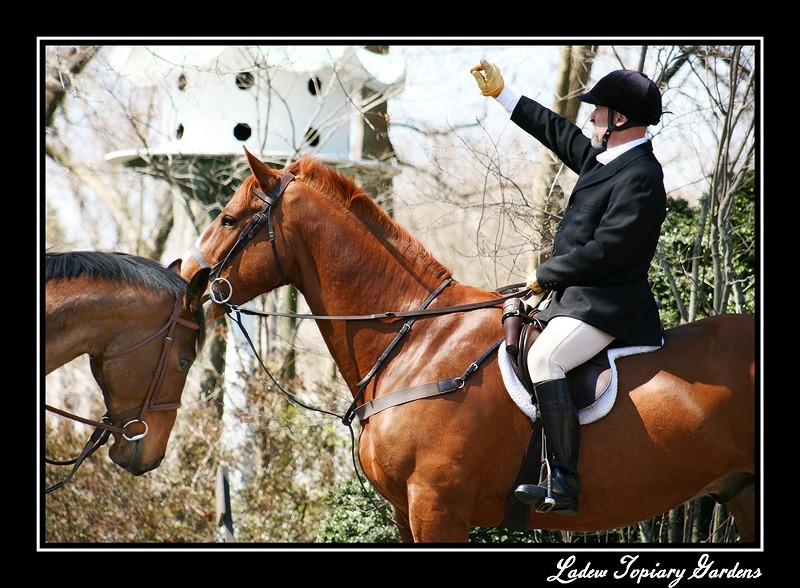 A mounted fox hunter giving directions to the team
