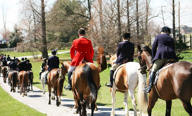 mountd fox hunters lined up is a row