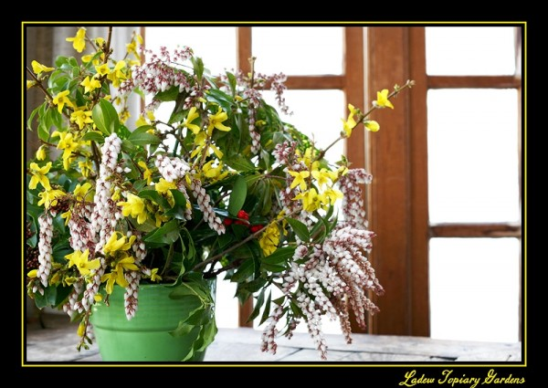 spring floral arrangement in front of window