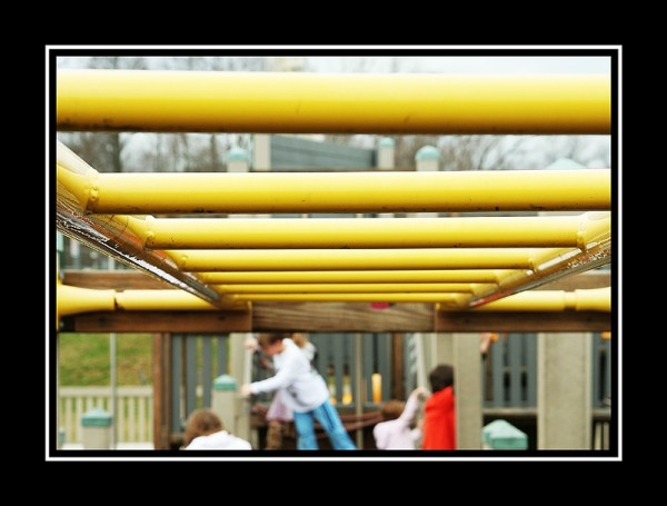 monkey bars at a playground