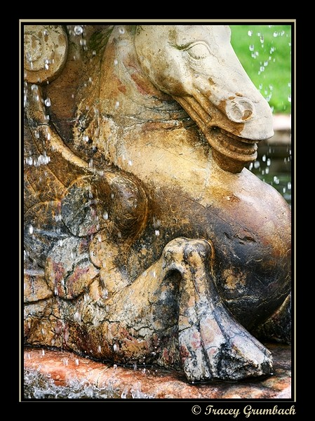 detail of water monster fountain