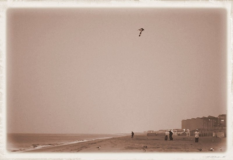 people flying kite on beach in morning