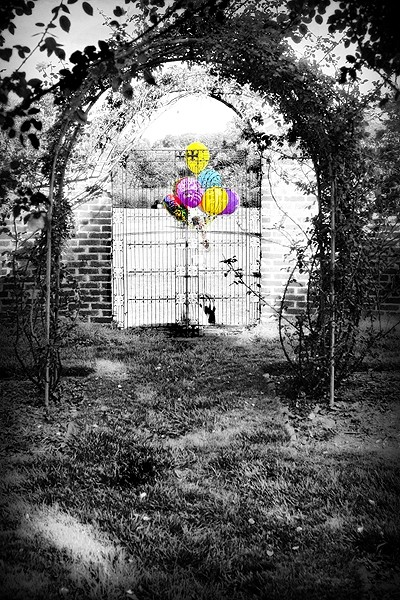 colored balloons in a black and white garden