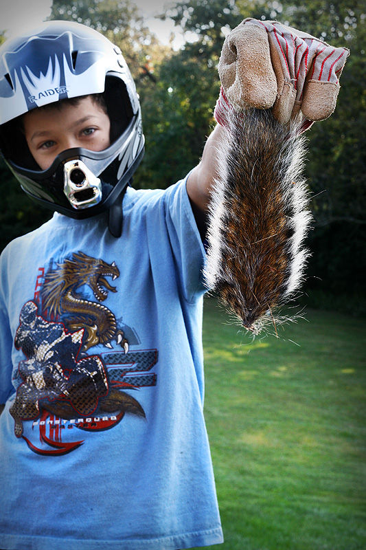 boy holding a squirrel tail