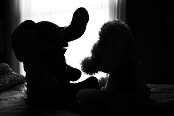two stuffed animals talking