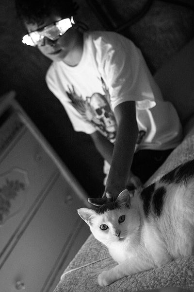 boy giving rabbit ears to a cat