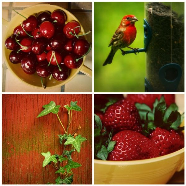 montage of the color red