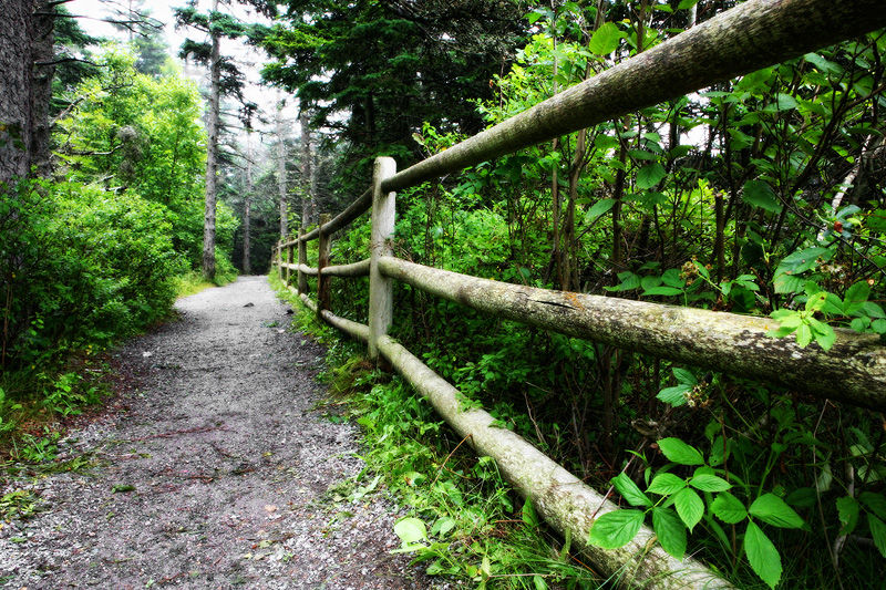 trail at Bass Harbor Head Lighthouse, Maine