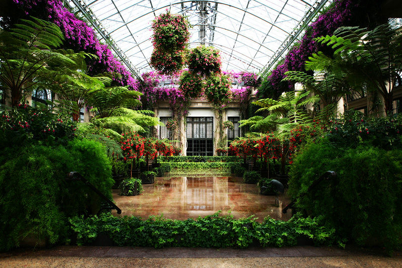 inside the conservatory at Longwood Gardens, PA