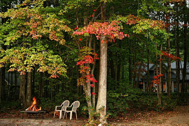 fire pit and house in the woods during Autumn