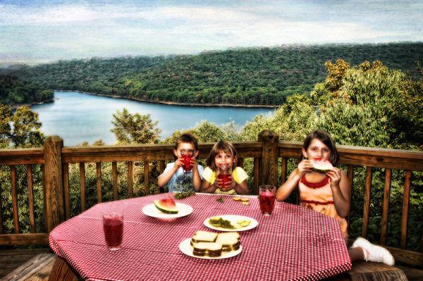 kids at a picnic