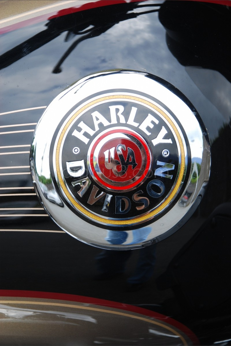 Harley's Logo