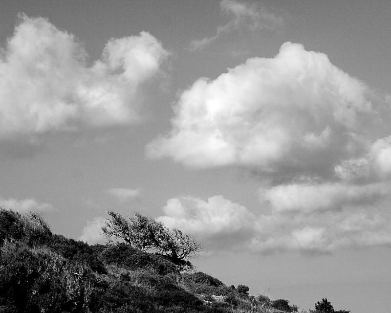 Núvols de cotó