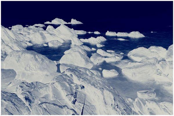 Un dia al Pol Nord