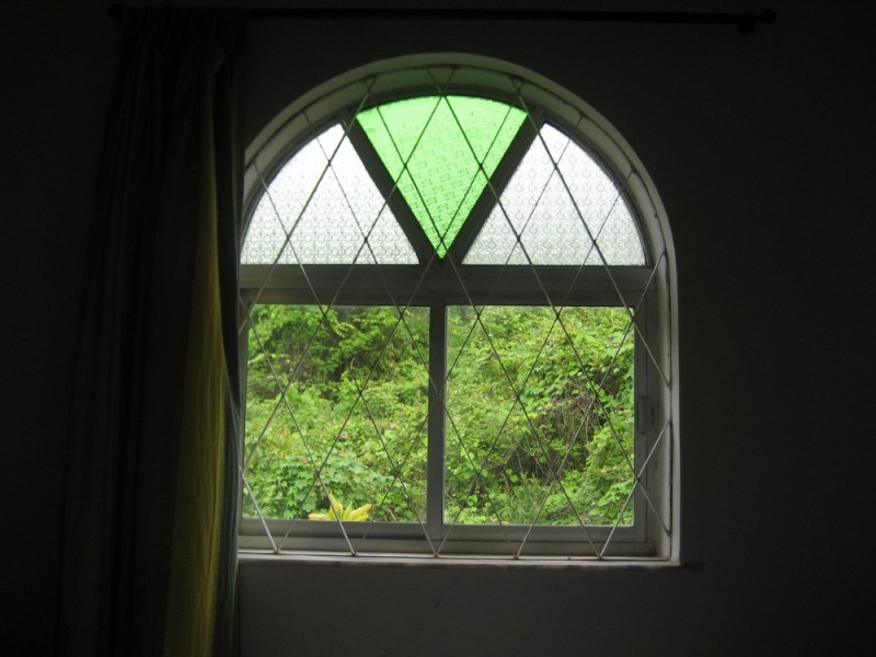 Across my window world is green