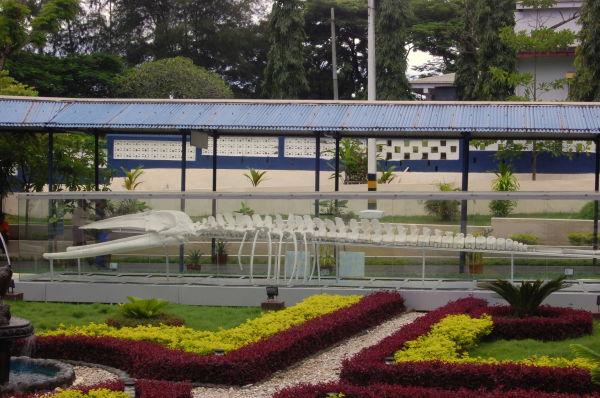 Samudrika Museum, Andaman