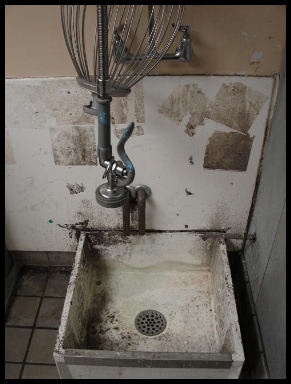 Dirty Mop Sink