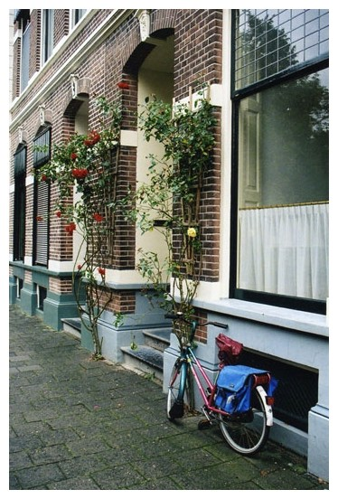 Doorway with Roses and a Bike