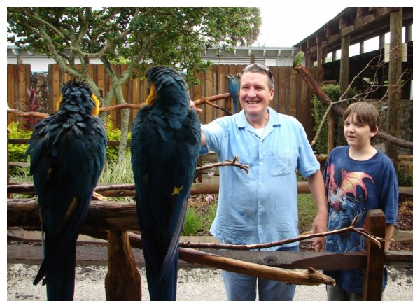 Bob and Thomas at Gatorland with Macaw Parrots