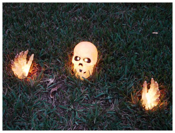 Spooky Skeleton for Halloween