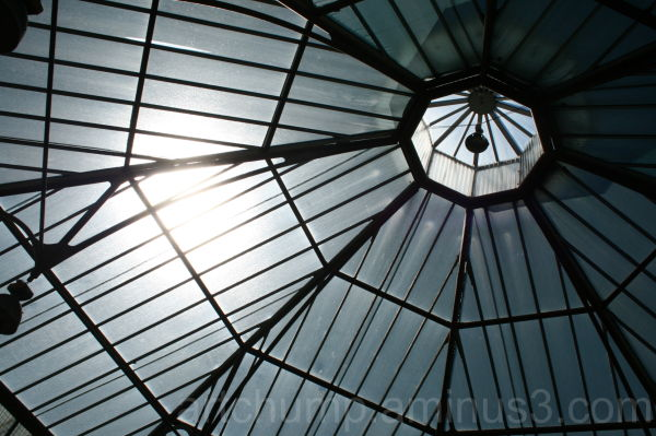 architecture photography roof adelaide market plac