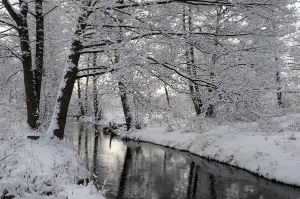 Ostrołęka 2009.02.28
