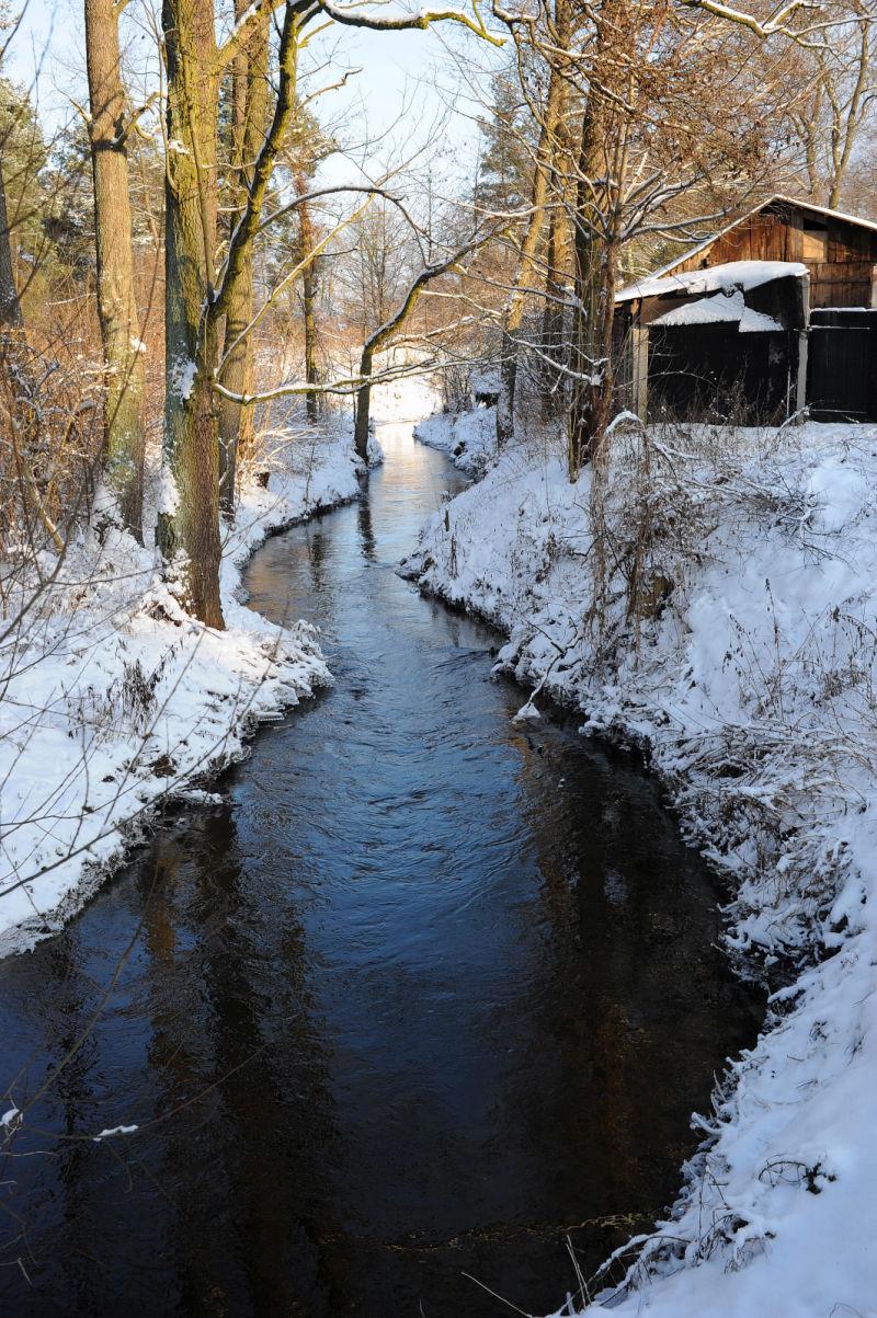 Winter 2010 - Czeczotka River