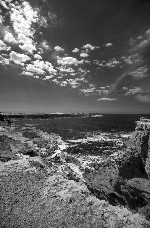L'Île-d'Yeu